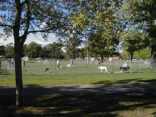 Picture: Bay County Dog Park